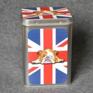 English Bully - Union Jack