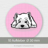 West Highland Terrier rosa